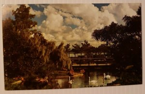 Vintage Postcard Bird Ponds Sea World San Diego California   369