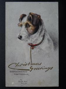 ROUGH HAIRED FOX TERRIER Sketches of Doggies c1914 Postcard Raphael Tuck 9681