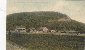 DEERFIELD , Massachusetts, 1900-10s ; Mt Sugar Loaf