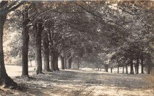 F46/ Jefferson Ohio RPPC Postcard 1914 Ashtabula Road Big Trees