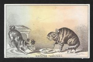 VICTORIAN TRADE CARD Books Cat Dog Disputed Territory