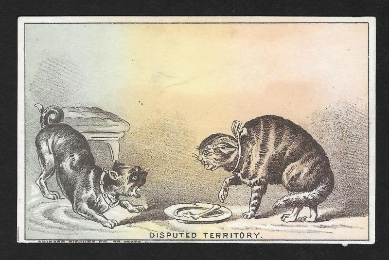VICTORIAN TRADE CARD Books Cat Dog Disputed Territory