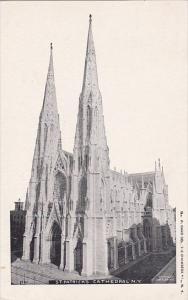 Saint Patricks Cathedral New York City New York