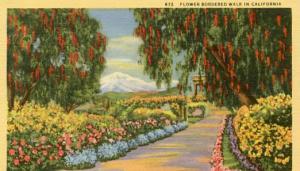 CA - Flower Bordered Walk