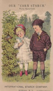 TC: CORN STARCH Purity Guaranteed, Inter. Starch Co, Victorian kids, 1890s