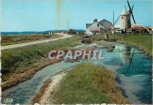 Postcard Modern picturesque Vendee 85,112 a corner of the marsh