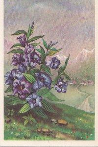 POSTAL B03446: Pintura de Florez azules.