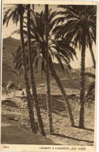 TUNISIE CPA LEHNERT & LANDROCK  (148856)