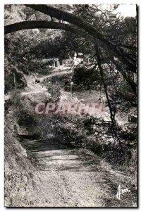 Old Postcard French Riviera Toulon Cap Brun Path customs