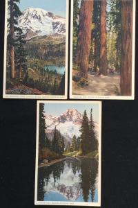 Postcard (3) Unused Rainier National Park LB