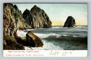 Catalina Island CA, Sugar Loaf and Bay, Vintage California c1905 Postcard