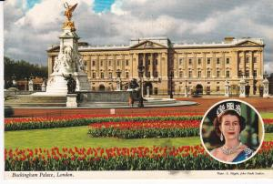 Post Card  London Buckingham Palace hide