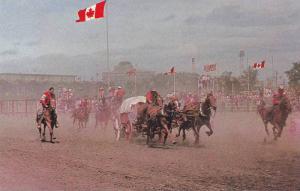 Chuck Wagon Race , Calgary , Alberta , Canada , 40-60s #4