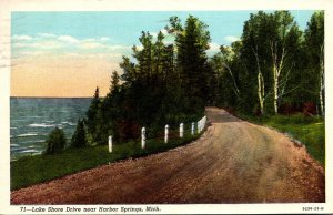 Michigan Lake Shore Drive Near Harbor Springs 1954 Curteich