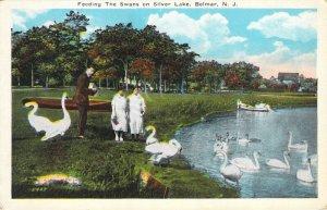 Feeding the Swans on Silver Lake Belmar NJ White Border Unused Postcard