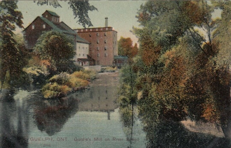 GUELPH , Ontario , Canada , 1900-10s ; Goldie's Mill on River Sneed
