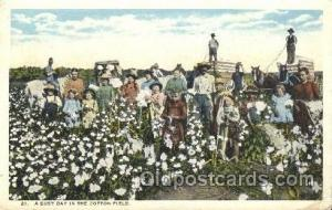 Cotton Field Farming, Farm, Farmer, Postcard Postcards  Cotton Field