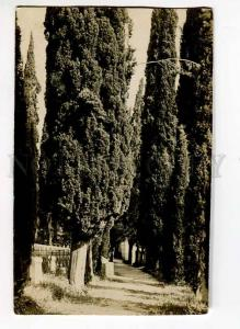 262226 Croatia Opatija ABBAZIA cemetery Vintage photo postcard