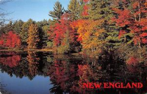 USA Autumn Reflections New England Lake Landscape