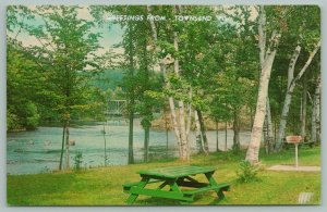 Townsend Wisconsin~Greetings~Vacationland River Scene~White Birches~c1950 PC
