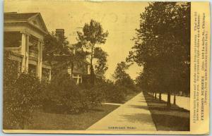 1908 Chicago IL Advertising Postcard PETERSON NURSERY w/ Sheridan Road Scene