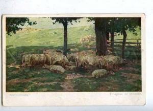 184583 Flock of sheep RURAL Life by KAUFMANN Vintage PC