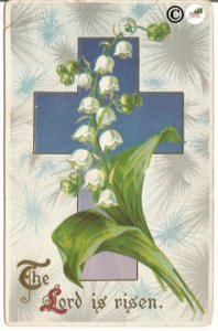 Ultra Violet Cross with Burst of Gray Blue Background White Lily of the Valley