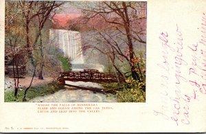 Minnesota Minneapolis Minnehaha Falls 1905