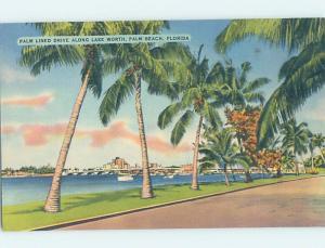 Linen PANORAMIC VIEW Palm Beach - West Florida FL i1307