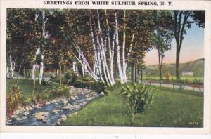 New York Greetings From White Sulphur Springs 1939