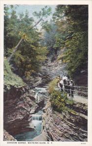 New York Watkin Glen Shadow Gorge