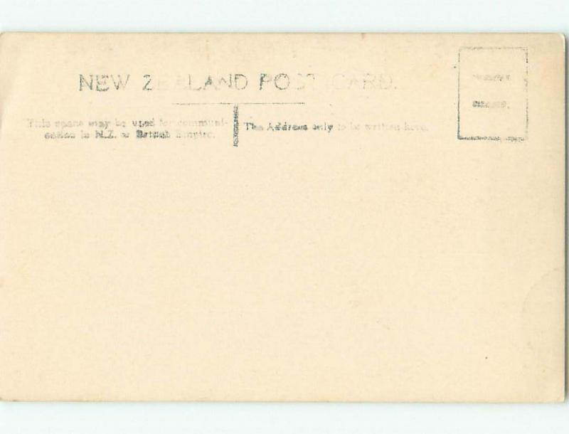 old rppc NICE VIEW Country Of New Zealand i2163