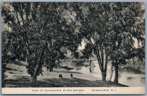 SCHOHARIE NY RIVER BRIDGE ANTIQUE POSTCARD