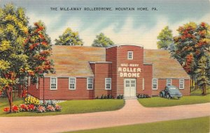 LPS42 Mountain Home Pennsylvania Wile Away Rollerdrome Roller Skating Rink