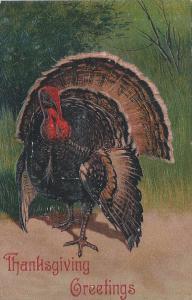 Thanksgiving Greetings, Early Embossed Postcard, Unused