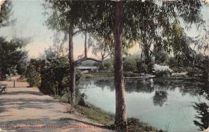 Los Angeles California~Eastlake Park~Chap Sits on Bank of the Lake~1910 Postcard