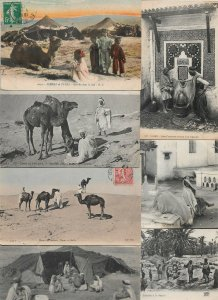 Algeria Street Scenes Camel´s And People And More Postcard Lot of 15 01.12
