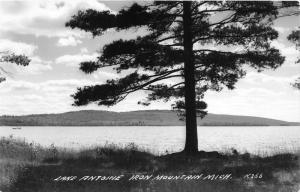 Iron River Michigan~Lake Antoine View~1940s Real Photo Postcard