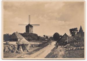 Netherlands, Gelderland; Mill & Rural Scene RP PPC Unposted, c 1920's