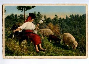 235502 PORTUGAL AVEIRO young shepherdess Vintage postcard