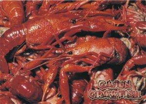 Cajun Crawfish LA, Louisiana - Yum! Yum! (A Postcard)