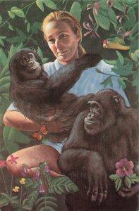 Postcard Mary Sherman Painting Gorillas