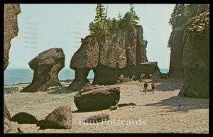 The Rocks - Hopewell Cape