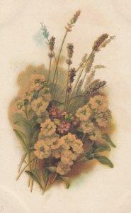 Yellow Flowers , 00-10s ; TUCK 8648