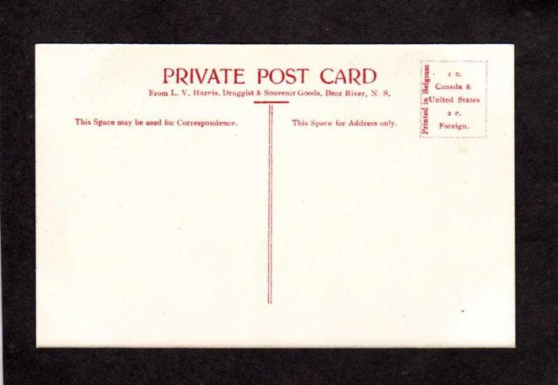 NS Bear River Nova Scotia Canada Carte Postale Privale Postcard City View