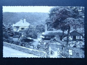 Devon STEPS BRIDGE CAFE near Exeter c1950s RP Postcard by Chapman & Son