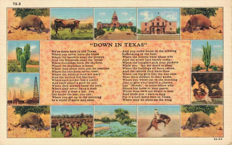 USA Down In Texas Linen Vintage Postcard 06.44