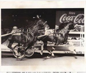 MEADOWLANDS, Harness Horse Race, T K'S SKIPPER, winner, 1990