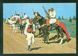 Tunisia Cavalier Zlass Riders Soldiers Guns Horses Tunisian Africa Postcard