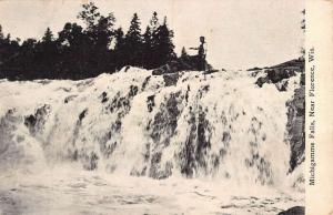 Florence Wisconsin Michigamme Falls Scenic View Antique Postcard K100299